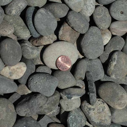 "Purchase 1 1/2"" Round River Rock at Pasco Rentals"
