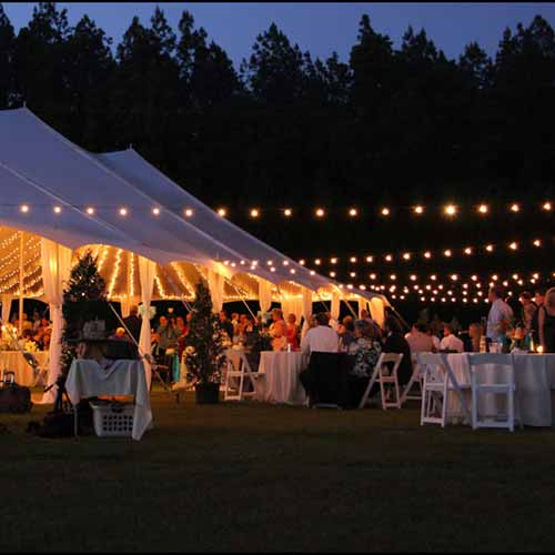 Rent a 100' String - Small Globe Canopy Lights from Pasco Rentals!