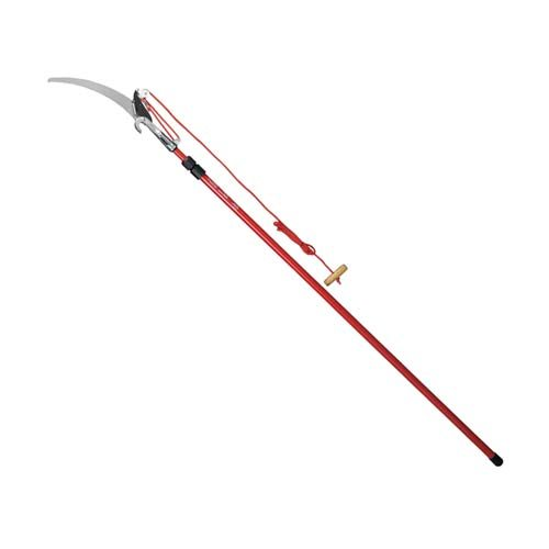 Rent a Pole Saw with Lopper from Pasco Rentals!